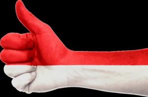 インドネシアの国旗色