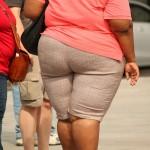 肥満した人の画像